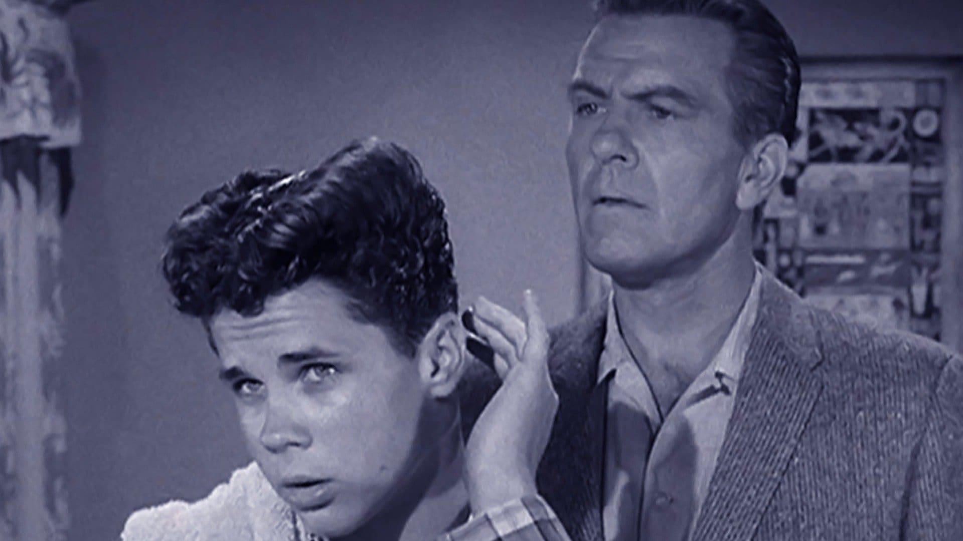 Wally's Haircomb