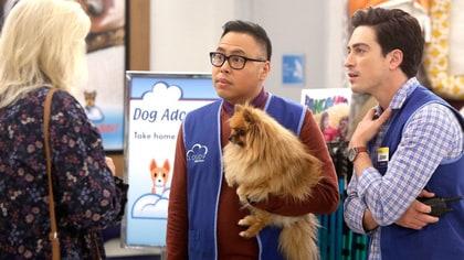 Dog Adoption Day