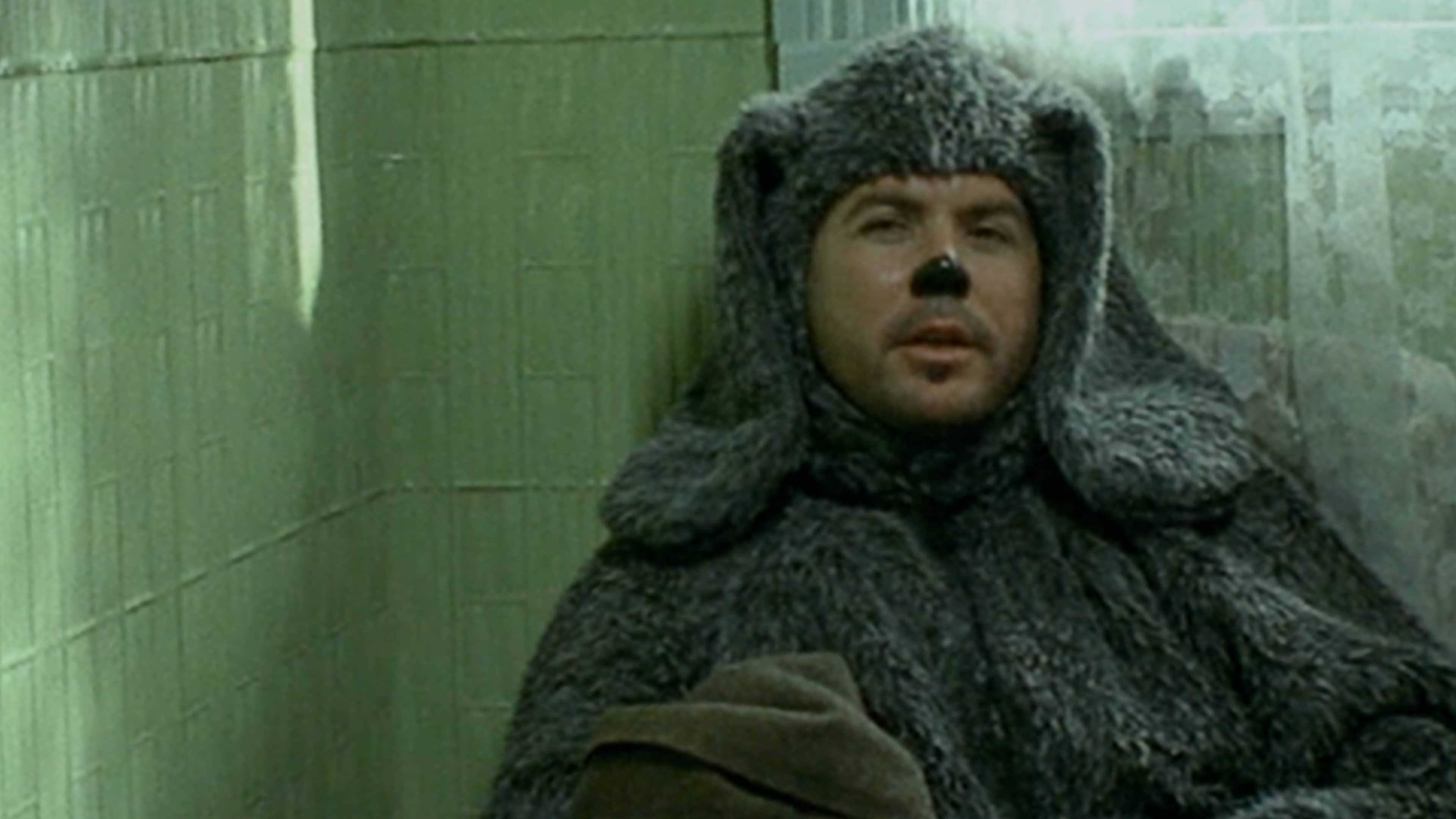 Watch Wilfred Online | Peacock