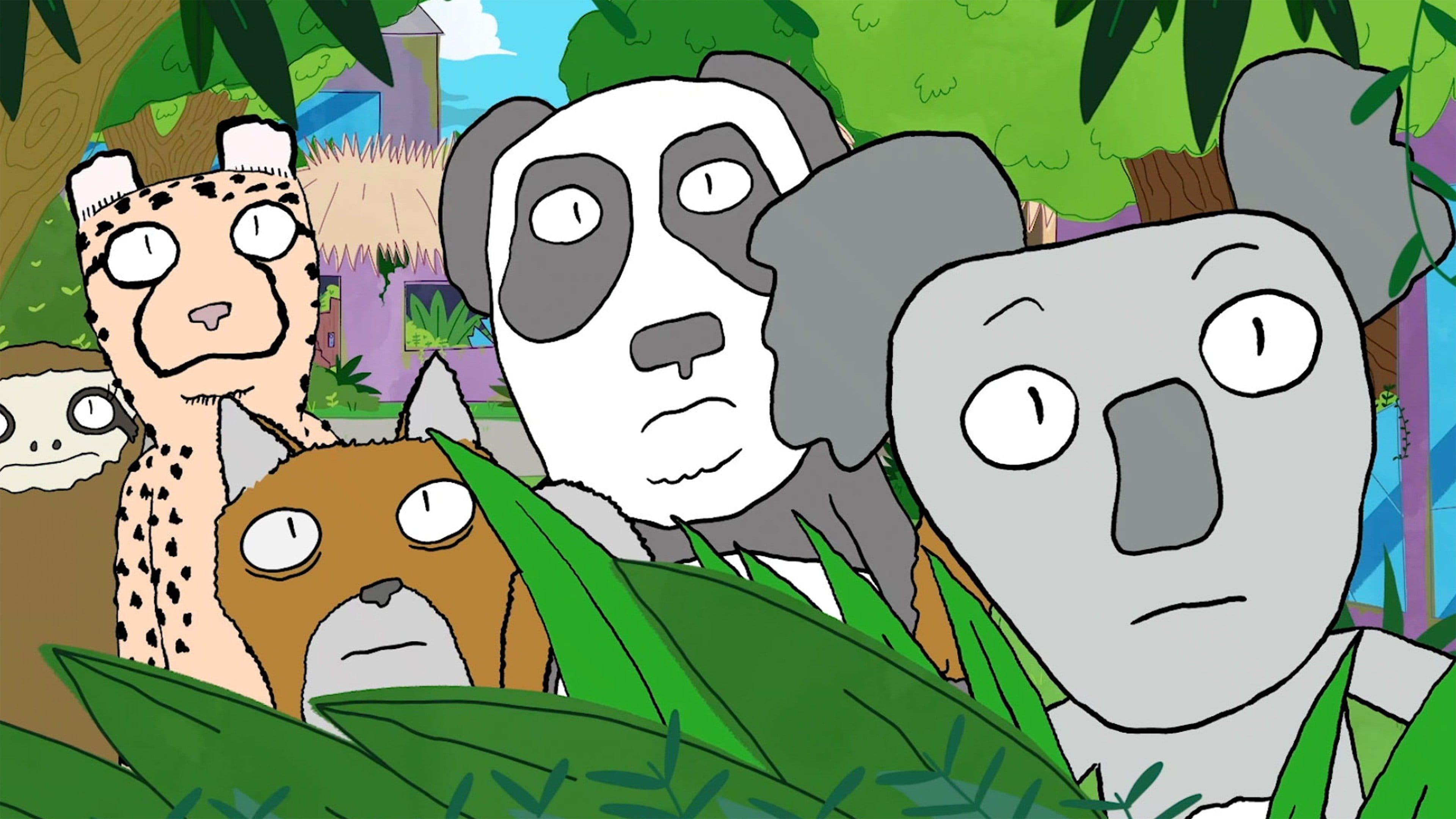 Broadcast Zoos
