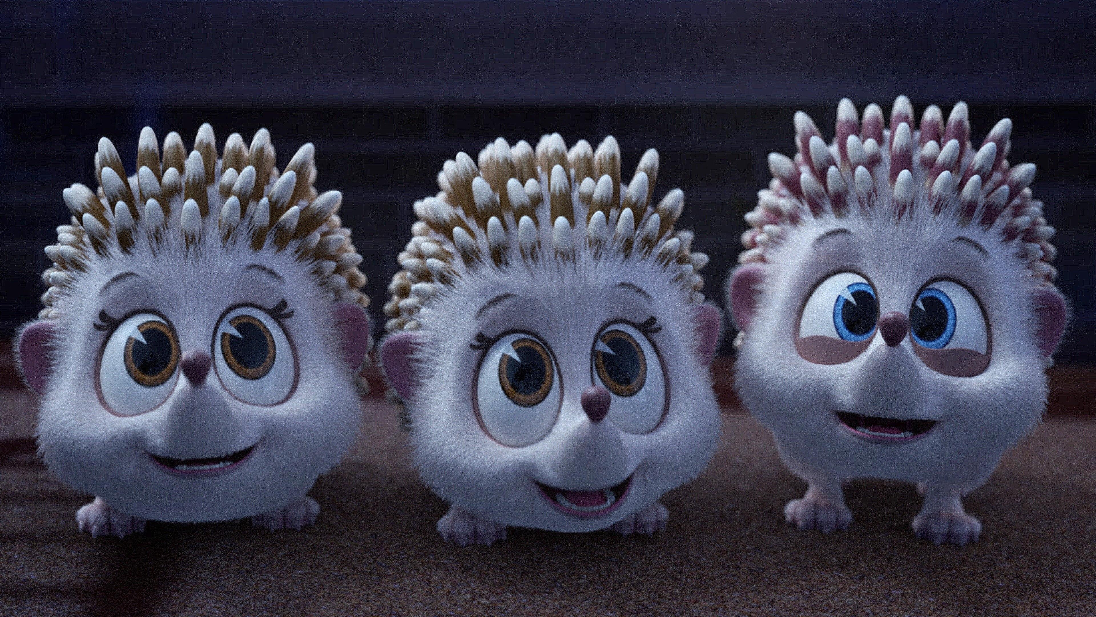 Hedgehog Sitters Club
