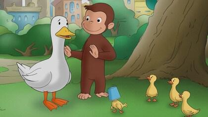 Duck Helper George; George's New Home