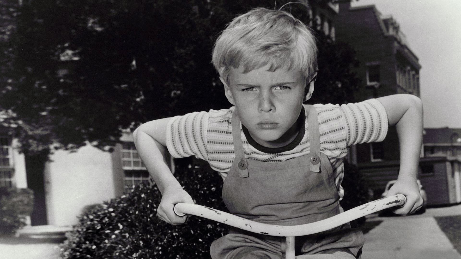 Watch Dennis the Menace Online | Peacock