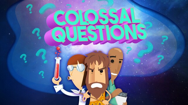 Colossal Questions
