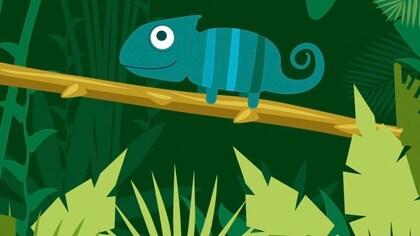 How Do Chameleons Change Color??