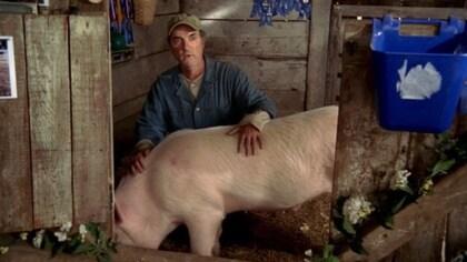 Mr. Monk Visits a Farm