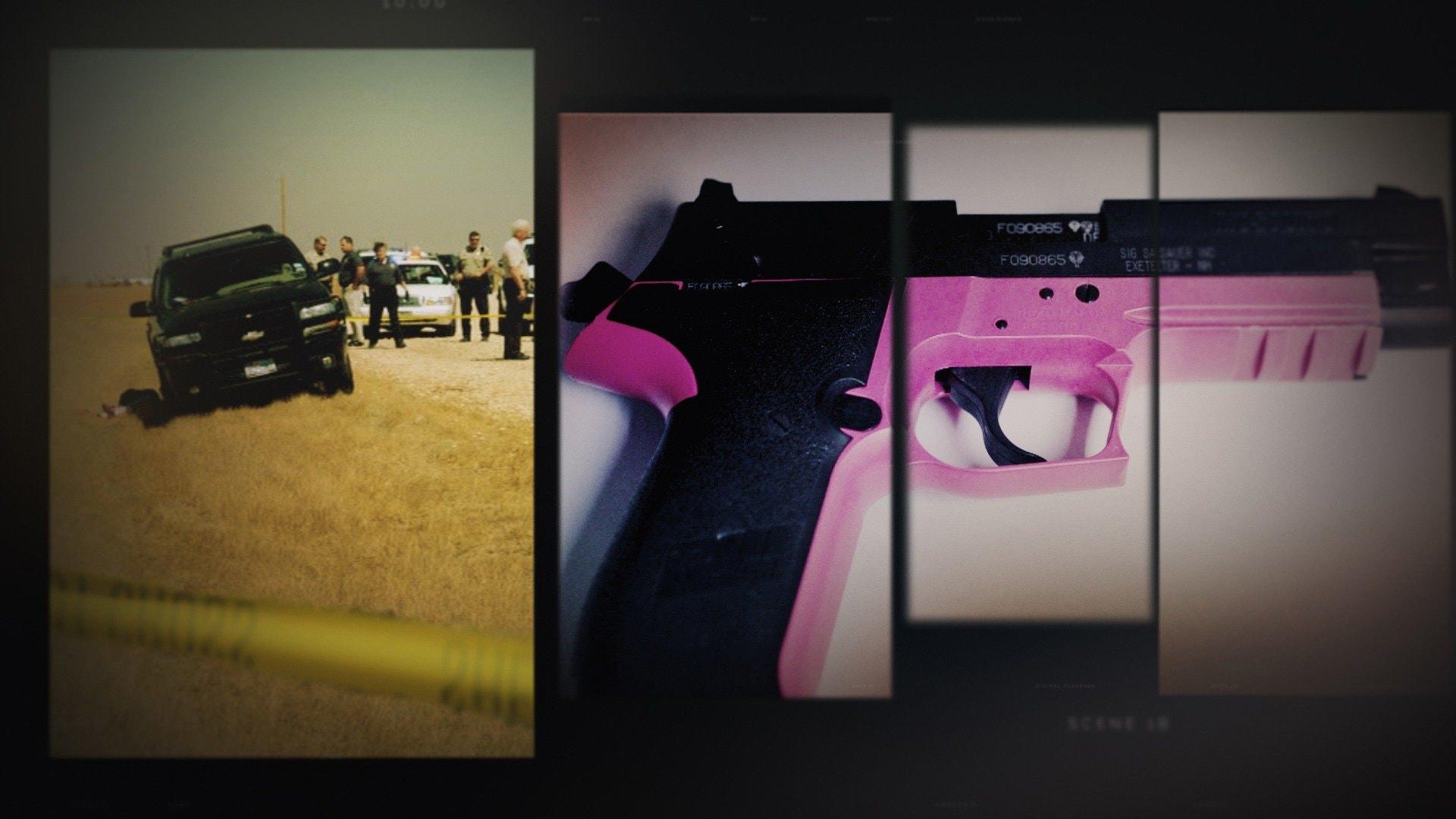 The Pink Gun Mystery